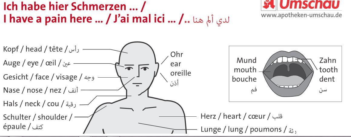 hals englisch übersetzung